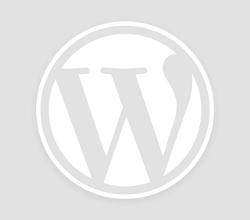 無料ブログから独自ドメインに引っ越すときに便利。忍者ブログから独自ドメインにjavascriptでリダイレクトをかける方法